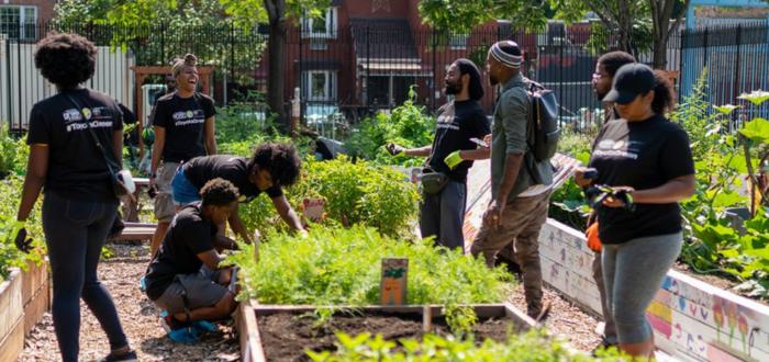 Good Life Garden's Community Garden